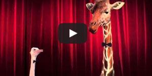 Ostrich in Oscar video
